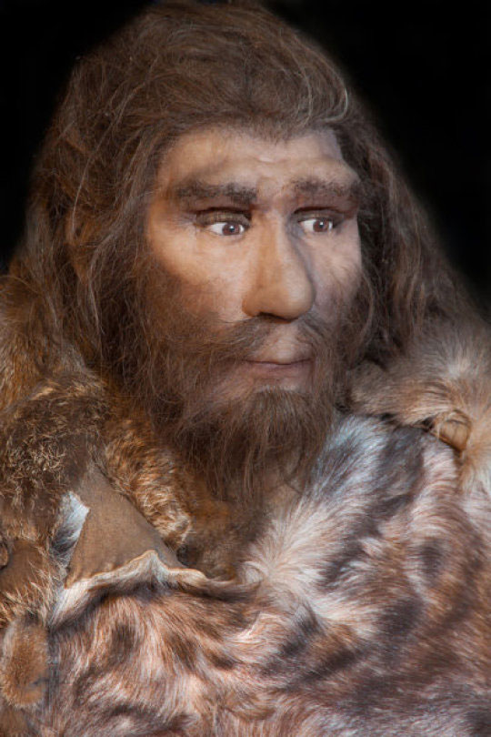 Rendering of a Neanderthal. Credit: © procy_ab / Fotolia