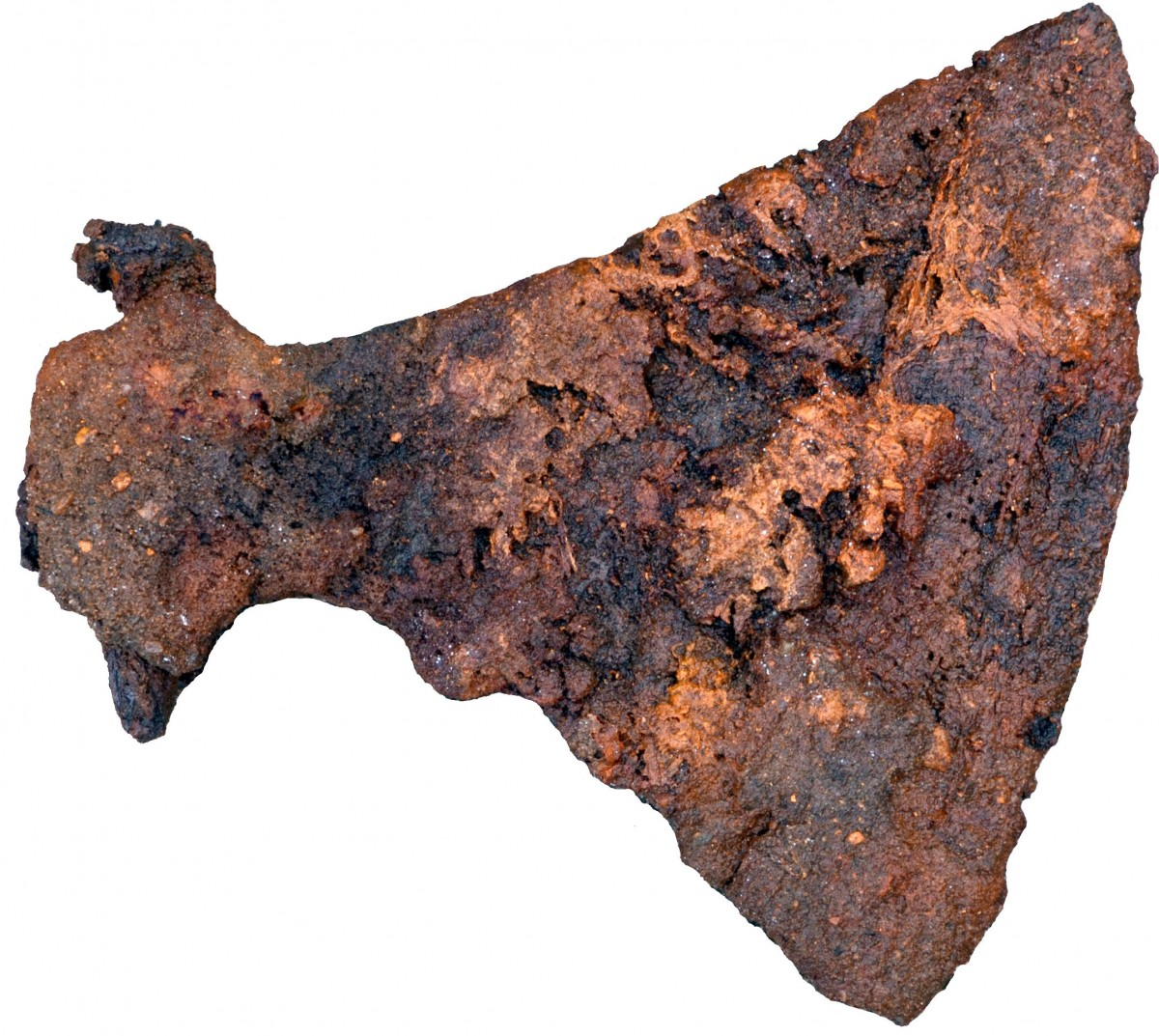 Archaeologists found a large axe buried in one of the men's graves. Photo Credit: Museum Silkeborg/Science Nordic.