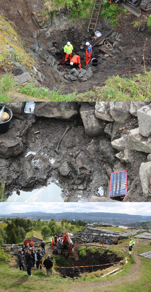 The archaeologists from The Norwegian Institute for Cultural Heritage Research have returned this year to conduct a full excavation of the well with the goal of removing the layers of dumped stone and ultimately the whole skeleton. Image Credit : http://niku.no