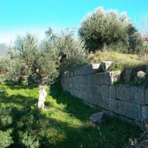 Remains of olive presses in ancient Thouria of Messenia