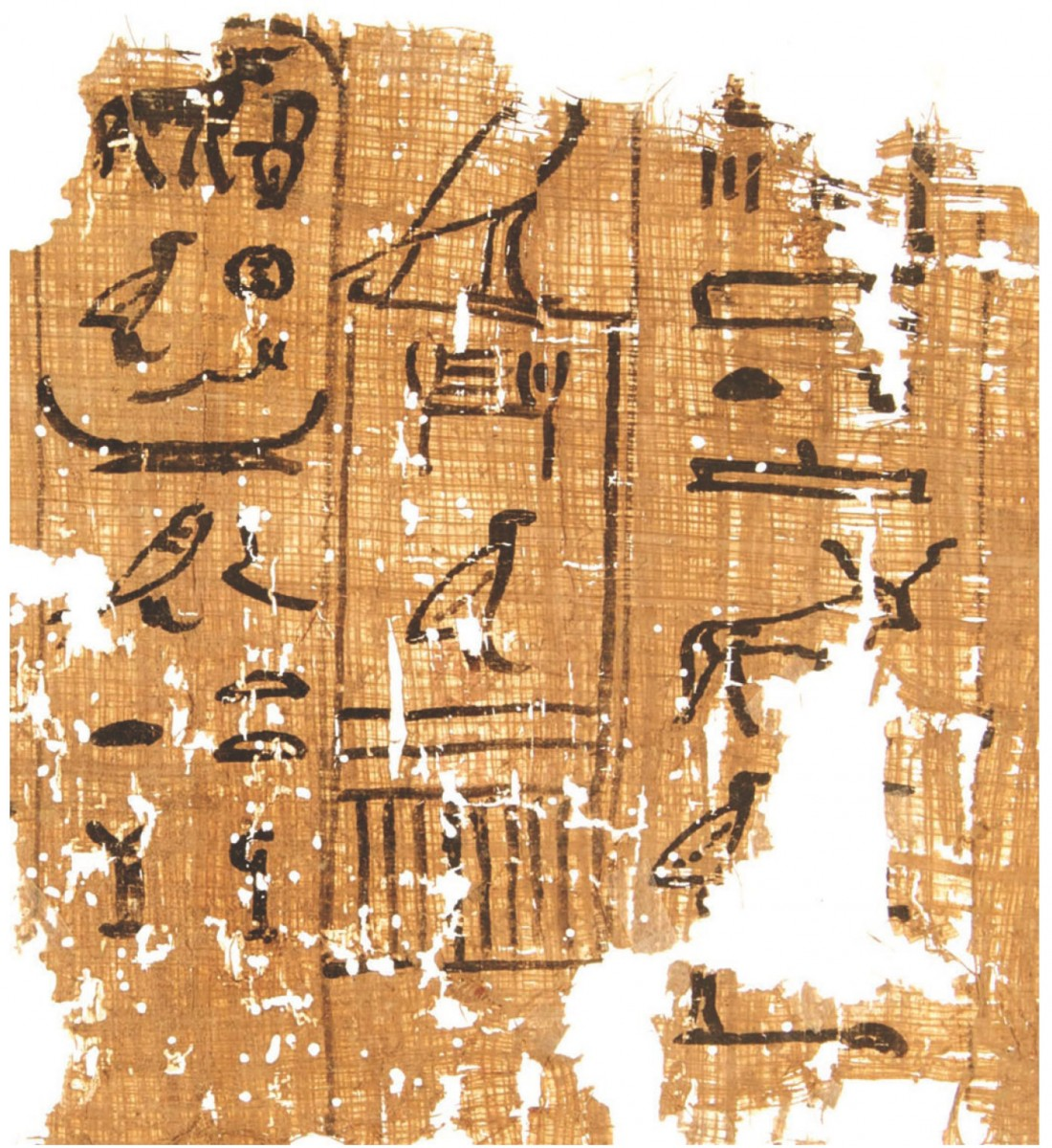 Part of papyrus inscribed with an account dating to the 13th cattle count of King Khufu. Photo Credit: G. Pollin/The History Blog.