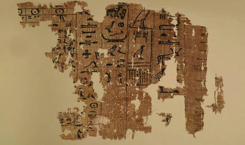 Another picture of the 13th cattle count papyrus fragment at display. Photo Credit: Ahram Online.