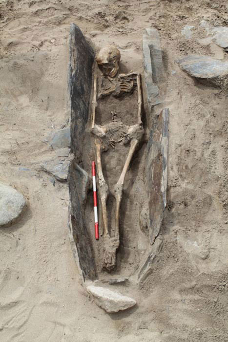 One of the skeletons found at the site in May, which dates to the medieval period. Photo Credit: DYFED Archaeological Trust/BBC.