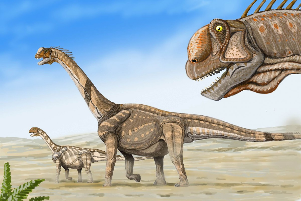 Sauropod dinosaurs reached lengths of more than 100 feet and weighed up to 70 metric tons. Fossilized remains of sauropod dinosaurs have been found on every continent. Image Credit: Dmitry Bogdanov