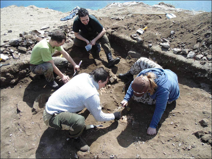 Archaeologists and experts at work at the site. Photo Credit: Dmitry Kichigin/The Siberian Times.
