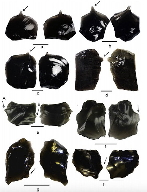 Archaeologists analyzed 15 obsidian artefacts recovered from the Nanggu site in the Solomon Islands and found that they were likely used for tattooing. Photo Credit: Kononenko et al/Journal of Archaeological Science: Reports/Live Science.