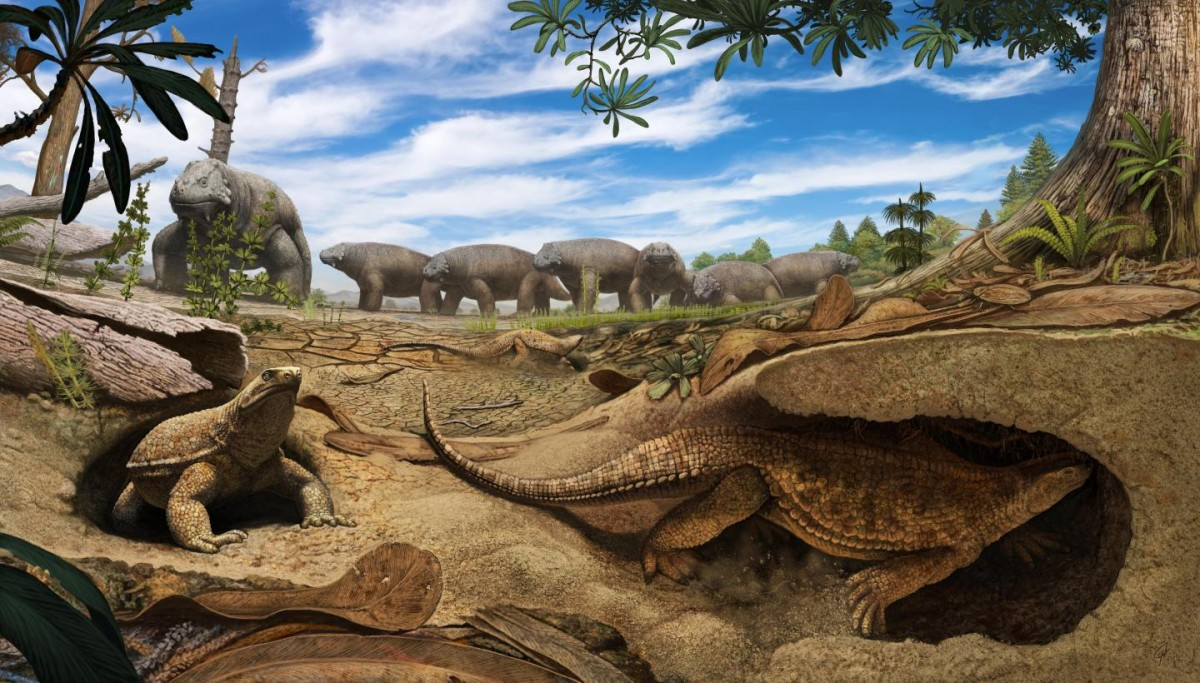 Artistic rendering of the early proto turtle Eunotosaurus (foreground) burrowing into the banks of a dried up pond to escape the harsh arid environment present 260 million years ago in South Africa. Meanwhile, a herd of Bradysaurus (background) congregates around the remaining muddy water. Credit: Artwork by Andrey Atuchin