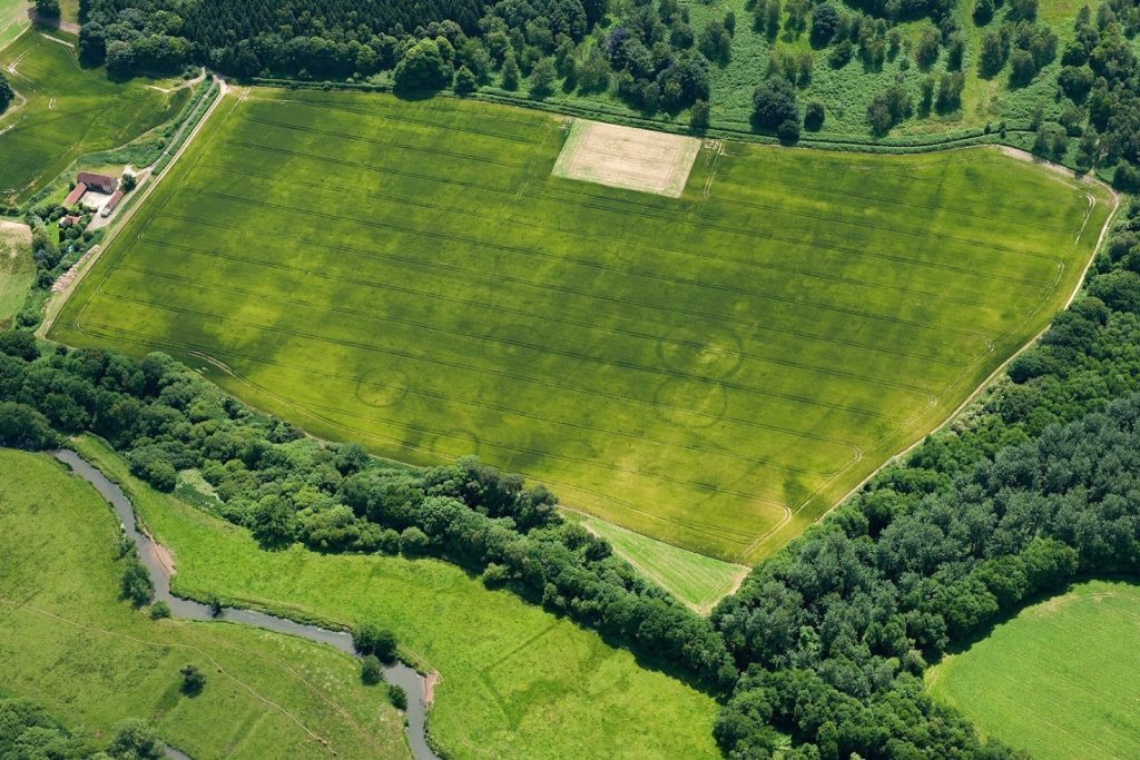 This photograph taken in 2015 depicts the cropmarks of five, possibly six, circular buried ditches, which would have once surrounded the mounds of Bronze Age barrows close to the river Rother.