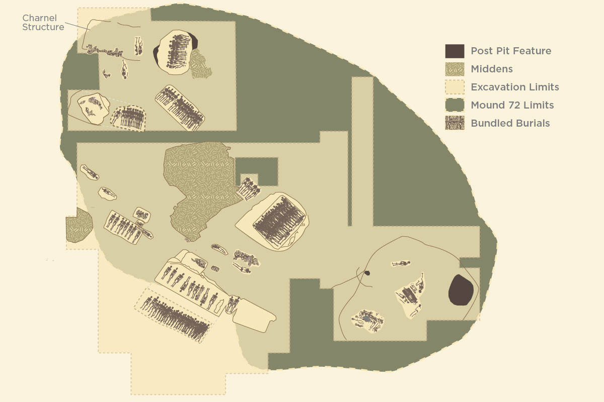 Several mass burials and burials of high-status individuals were found in Mound 72, in Cahokia. Graphic by Julie McMahon