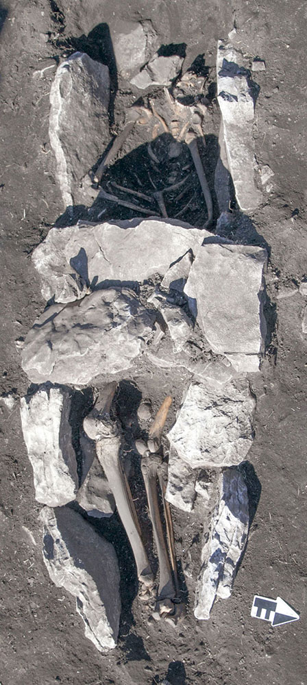 Skeleton as found in the middle of the altar at Mt. Lykaion.