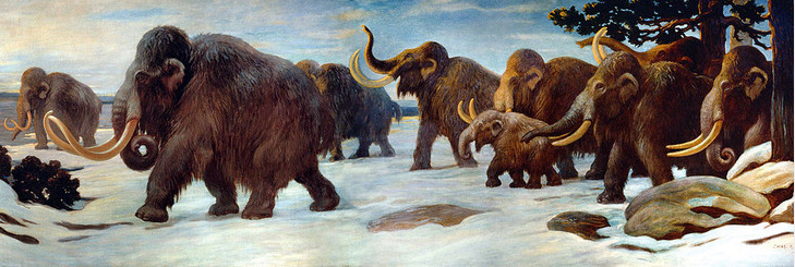 Woolly mammoths near the Somme River as depicted by Charles Robert Knight. Image: Charles Robert Knight in public domain.