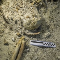 Ancient Skeleton discovered at the Antikythera Shipwreck