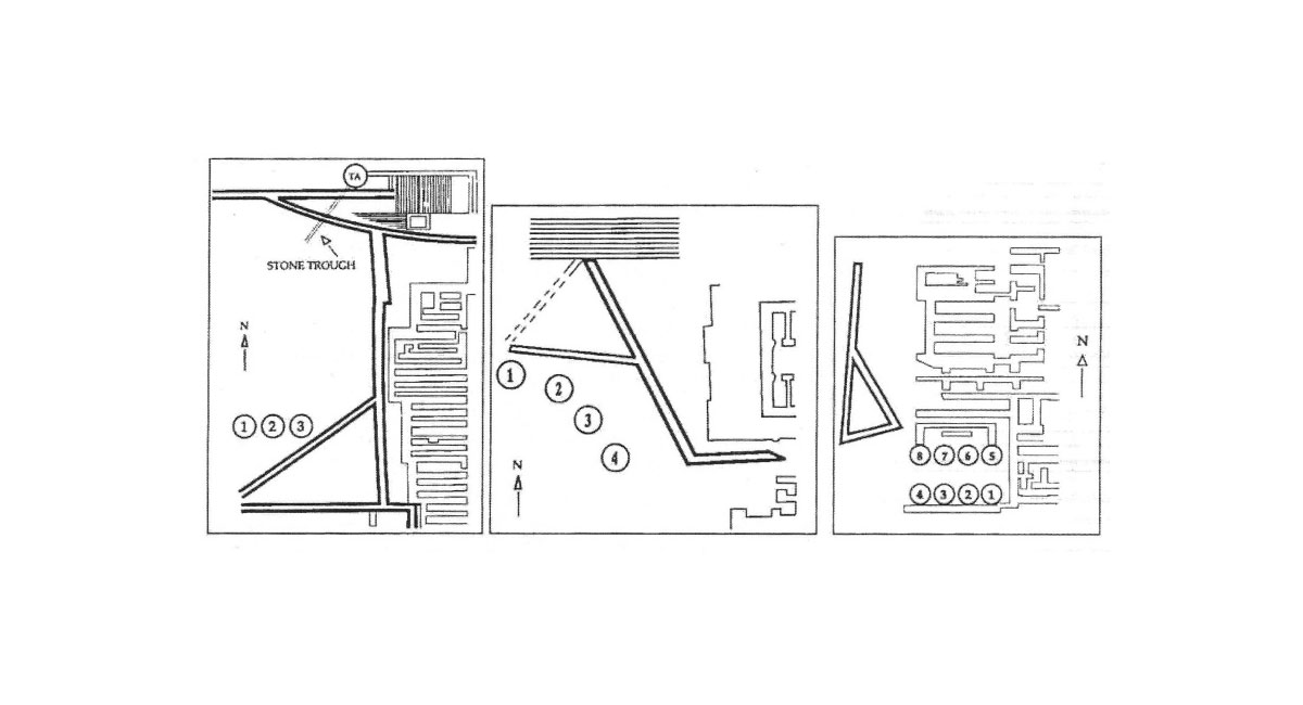 Fig. 5. West courtyards and «kouloures» in the «palaces» (from left to right) of Knossos, Phaistos and Malia (Strasser 1997, p. 74).