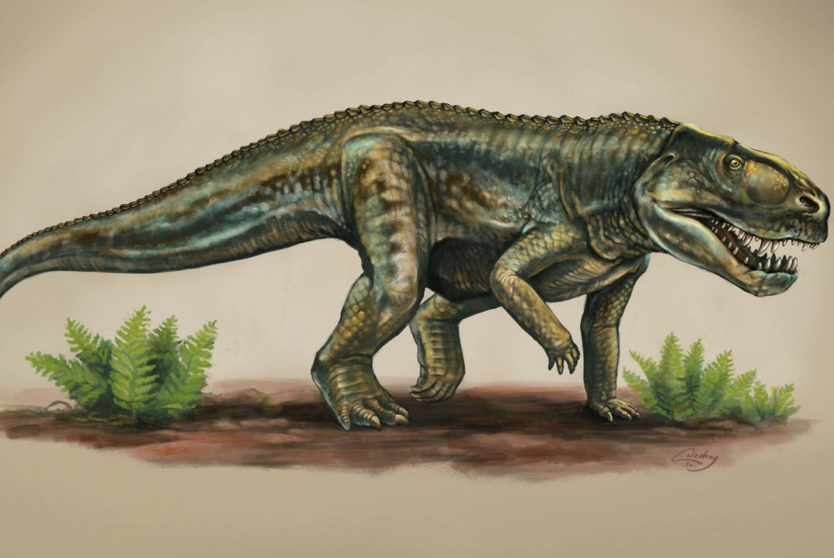 Artist's rendering of a Vivaron Haydeni that lived more than 200 million years ago. Credit image by Matt Celeskey