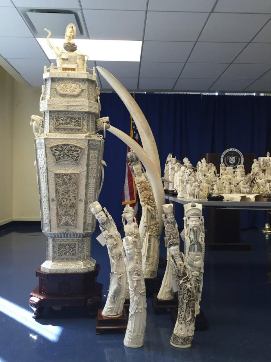 Three men are accused of selling ivory tusks out of a Manhattan antiques shop. Photo Credit: Shayn Jacobs/New York Daily News.