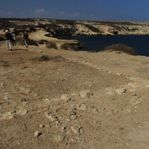 Results of the excavations at Akrotiri-Dreamer's Bay