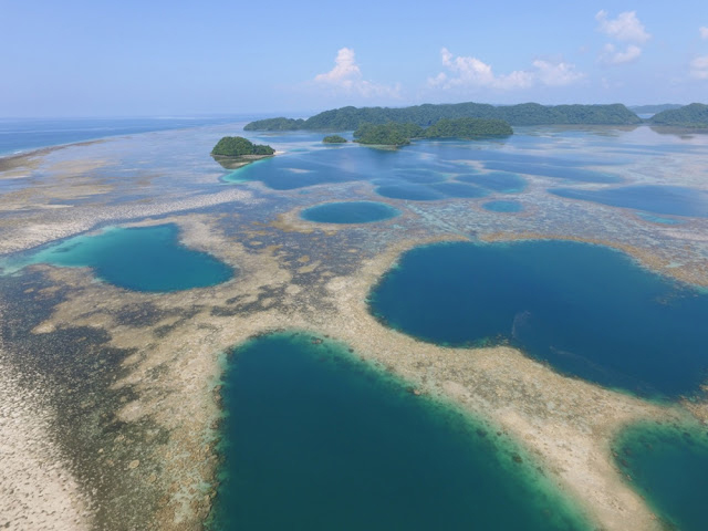 View of the reefs and islands around Airai Bay, Palau. [Credit: University of Oregon]