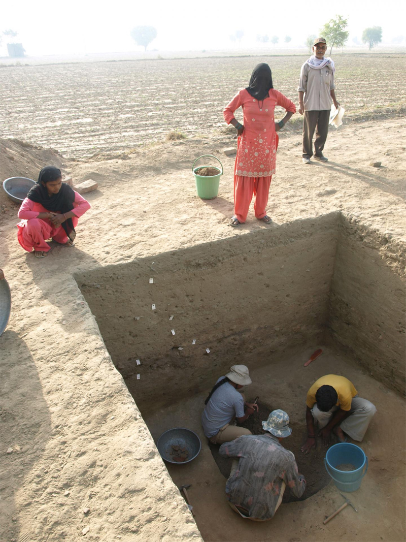 Excavating a pit from which archaeobotanical samples were collected at the Indus Civilization site of Masudpur I in northwest India. Image: Cameron Petrie