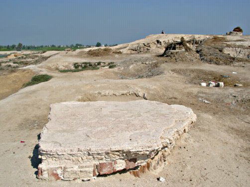 The Western Delta Regional Survey: The site Kom Qadi with part of a Roman floor and looking towards the main mound at Kafr Dawar.