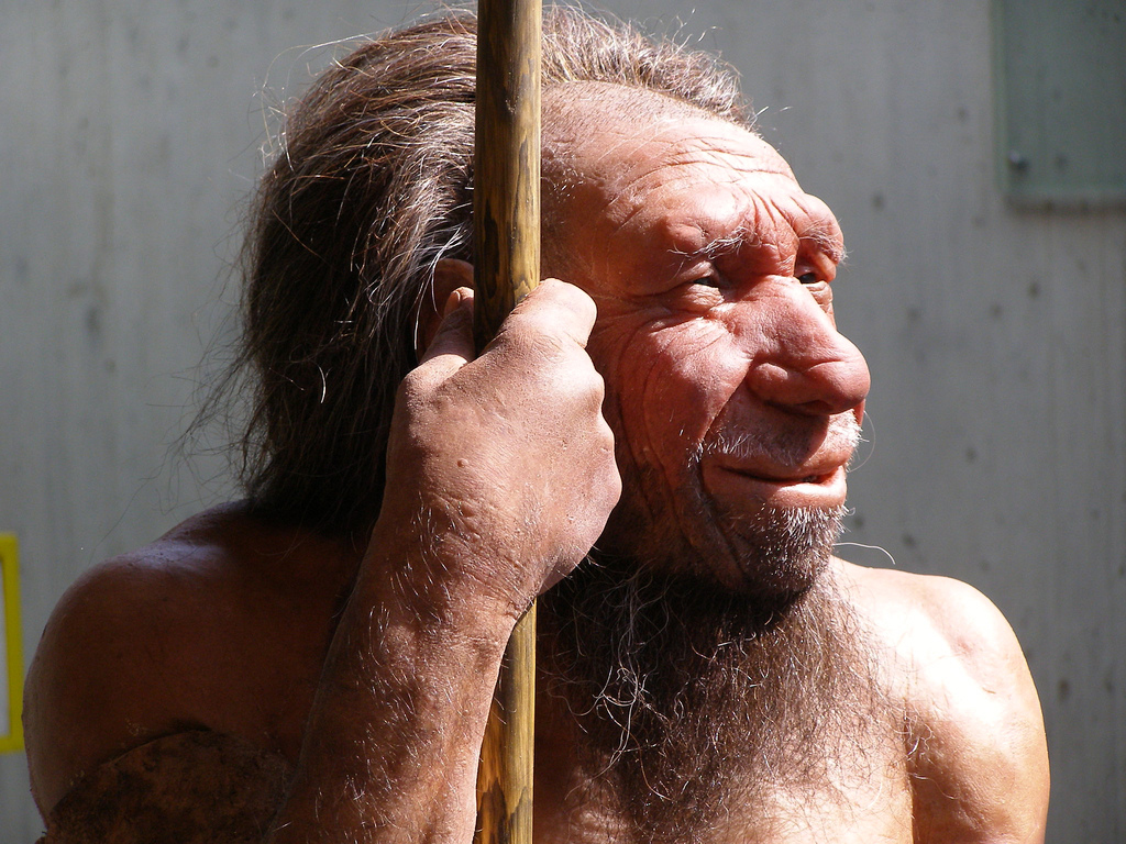 If the climate becomes cooler or warmer, species are forced to adapt their survival strategies – this also holds true for our ancestors, the extinct Neanderthals.