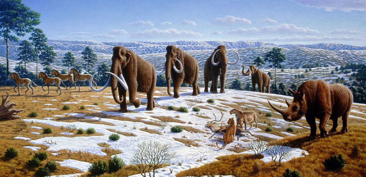 Ice Age fauna of nothern Spain. Credit: Wikimedia Commons