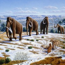 Ice Age hunters destroyed forests throughout Europe
