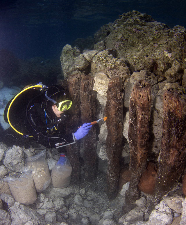 In situ cleaning and preservation of the wooden caissons of the mole. Photo credit: V. Tsiairis, 2016.