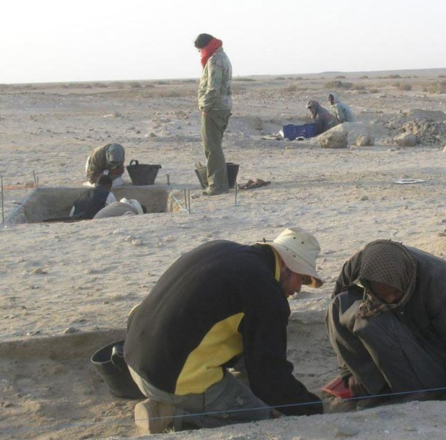 Excavations at the Berenike pet cemetery. Photo Credit: Marta Osypinska/the History Blog.