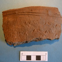 30 pieces of distinctive Neolithic pottery discovered in Scotland