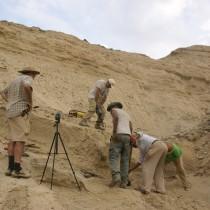New field season at the Engel Ela-Ramud basin, Eritrea