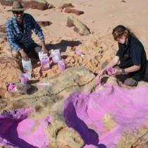 'Australia's Jurassic Park' the world's most diverse