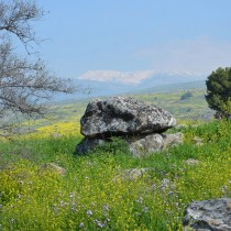Carved ancient dolmen exposed in the Galilee
