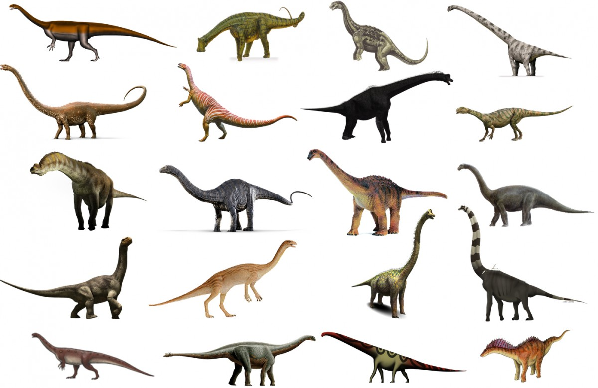 Sauropodomorpha.