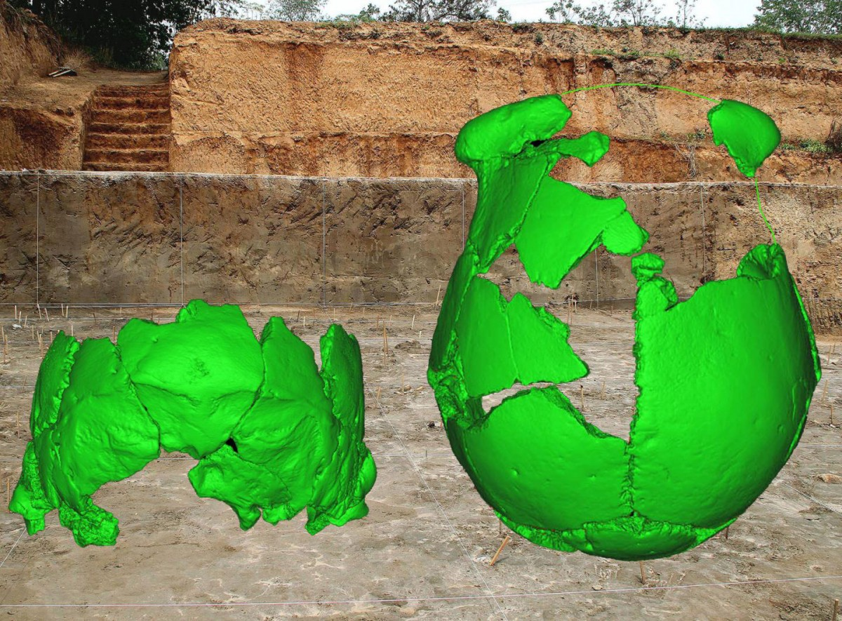 Virtual reconstructions of the Xuchang 1 and 2 human crania are superimposed on the archeological site where they were discovered. Credit: Xiujie Wu