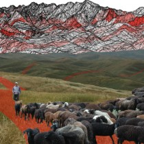 Silk Road evolved as 'grass-routes' movement