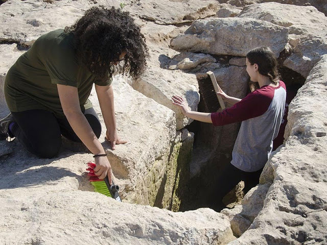 Boyer High School students participating in the archaeological excavation  at Ramat Bet Shemesh [Credit: Assaf Peretz/IAA].