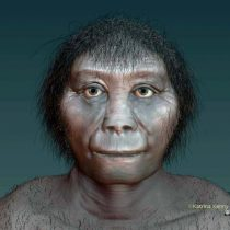 Origins of Indonesian hobbits finally revealed