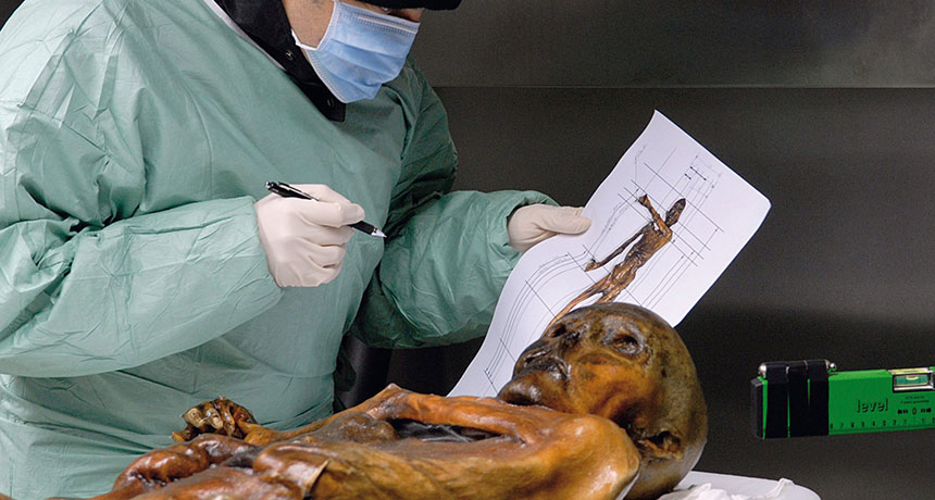 Ötzi the Iceman had life threatening shoulder and head injuries. But that's not what killed him, a new study concludes. South Tyrol Museum of Archaeology/EURAC/EURAC/Samadelli/Staschitz