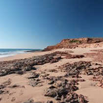 Earliest evidence found for Aboriginal people living on the Australian coast