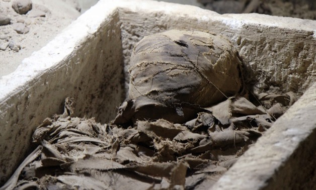 One of the mummies found at Tuna El-Gebel. Photo by Hossam Atef