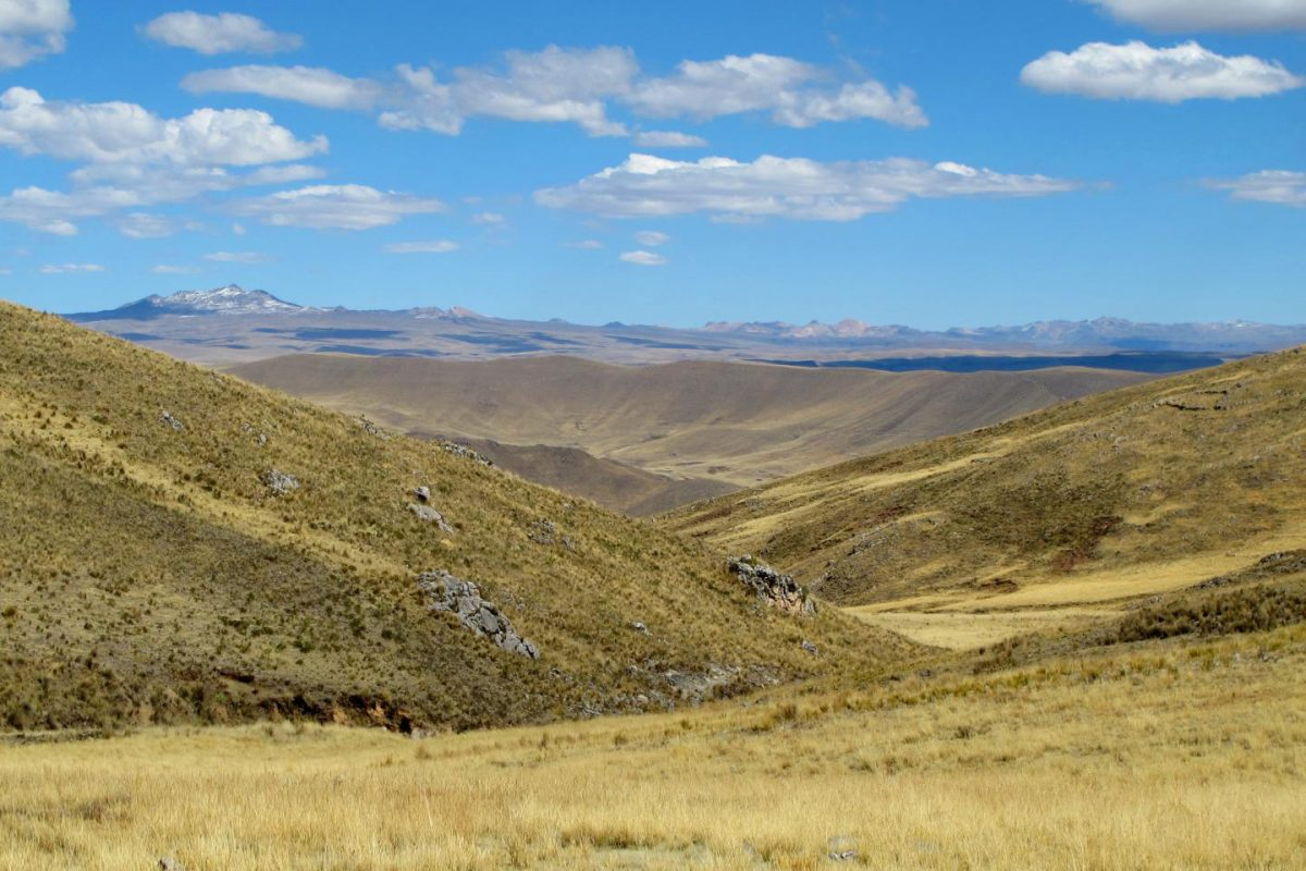 Intrepid hunter-gatherer families permanently occupied high-elevation environments of the Andes Mountains at least 7,000 years ago, according to new research led by University of Wyoming scientists. Credit: Lauren A. Hayes