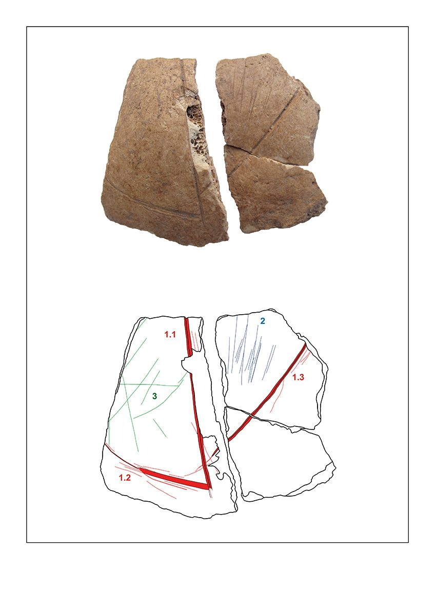 Fig. 5: Frontal bone fragment of skull 3 with carvings (1) and cut marks (2,3). (Image: Gresky, Haelm, DAI)