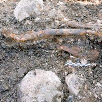 Israeli study finds Neanderthals had versatile habitats