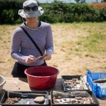 Ancient Devon community had a taste for exotic food and drink