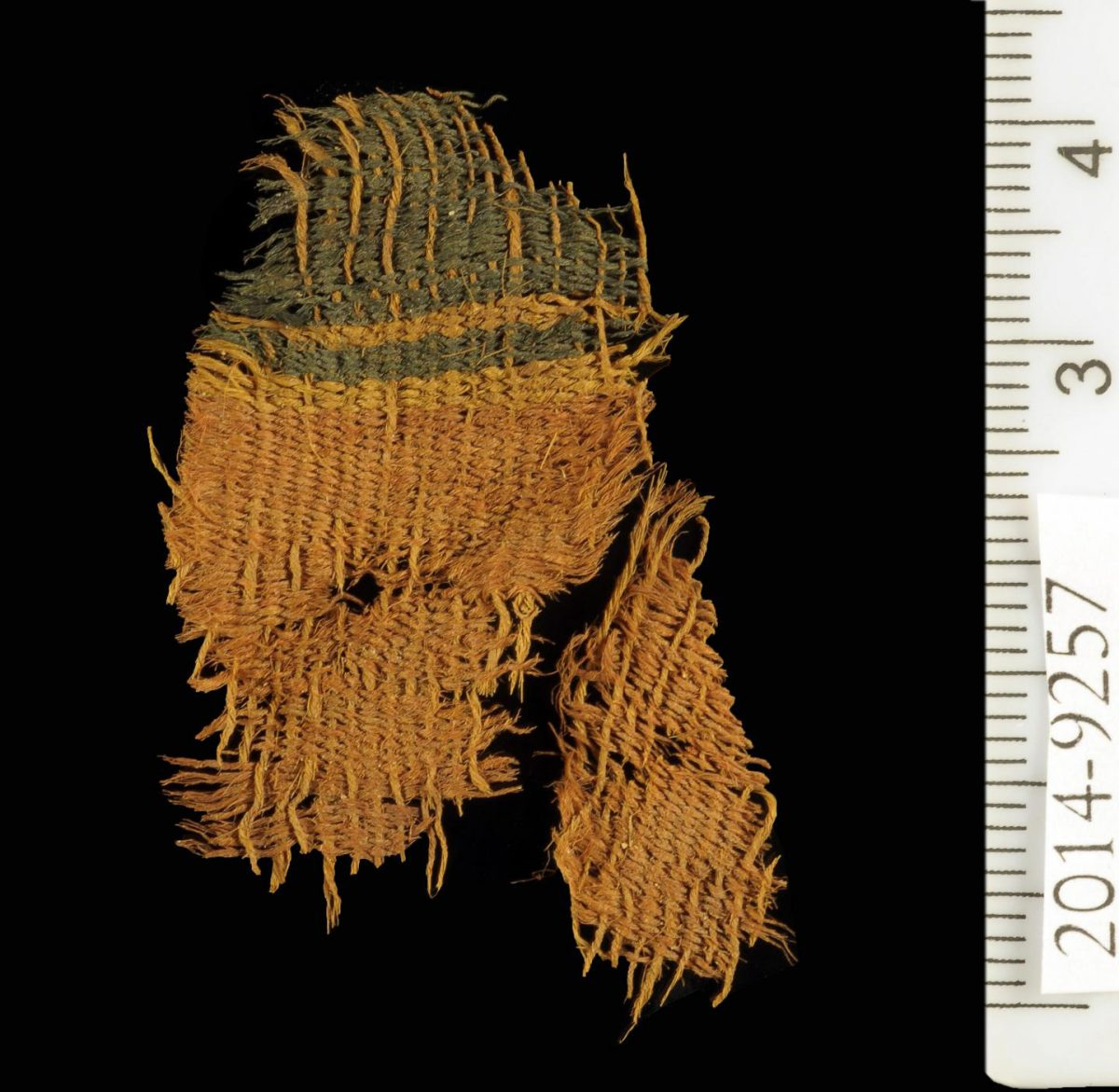 Dyed textile at Timna. Credit: Clara Amit, courtesy of the Israeli Antiquities Authority.