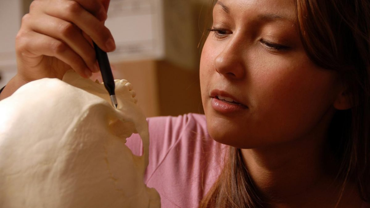 A student uses a digitizer to record geometric morphometric sites on a skull. Credit: NC State University