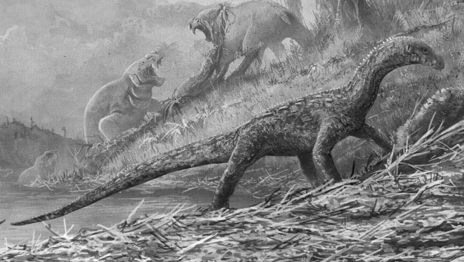 Teleocrater was for a long time in a systematic limbo because researchers couldn't exactly place him on the ancient reptilians' evolutionary tree.