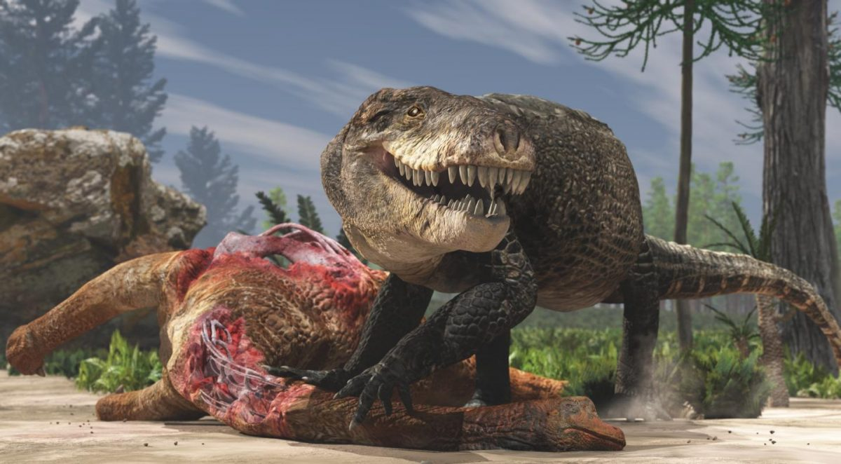 This is a paleoartistic restoration of Razanandrongobe Sakalavae scavenging on a Sauropod carcass in the Middle Jurarric of Madagascar. Unlike extant crocodilians, this terrestrial predator had a deep skull and walked on erect limbs. Credit: Fabio Manucci.