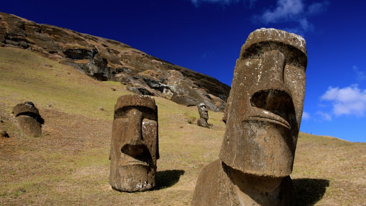 Early visitors of the Easter Island estimated a population of just 1,500-3,000, which seemed at odds with the nearly nine hundred giant statues dotted around the Island. How did this small community construct, transport and erect these large rock figures?