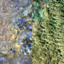 Ancient textiles reveal differences in Mediterranean fabrics in the 1st millennium BC